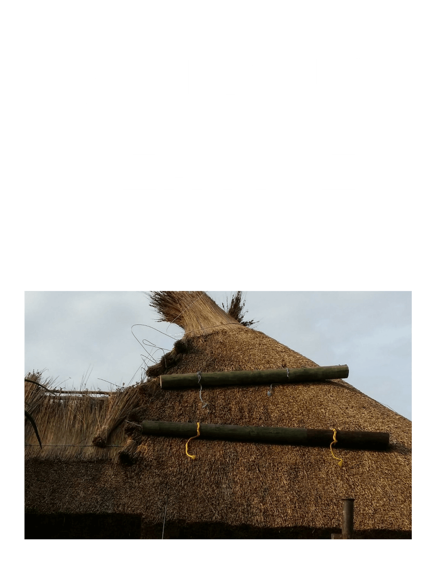Building Service in St Francis Bay